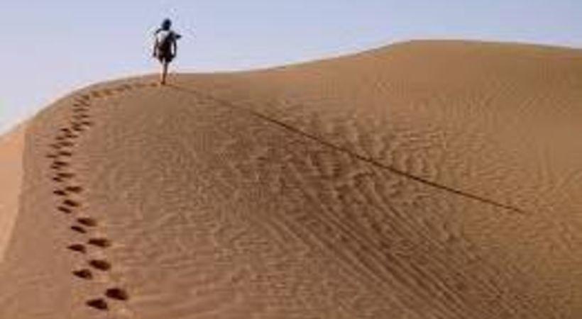En røst som roper i ørkenen