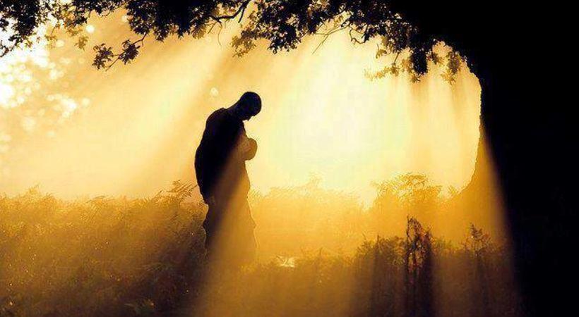 Bønnens sprengkraft!